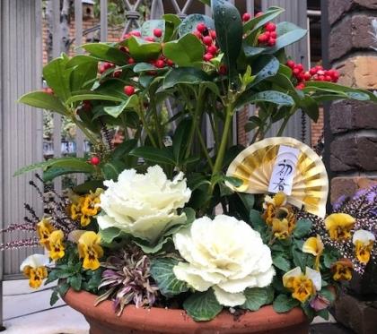 花の歳時記 1月 葉ボタン